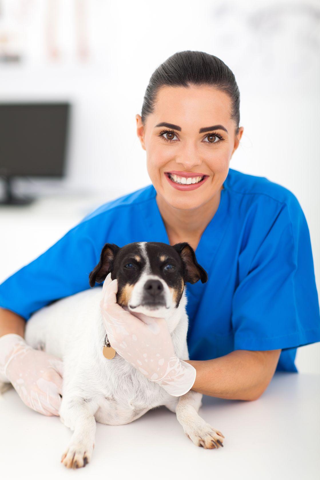 Tierarzthelferin mit Hund