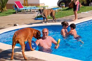 Wenn die komplette Familie am Pool ist, muss der Hund auch mit.
