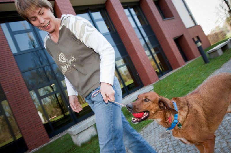 Ein Hund kann das Risiko für einen Schlaganfall signifikant senken.