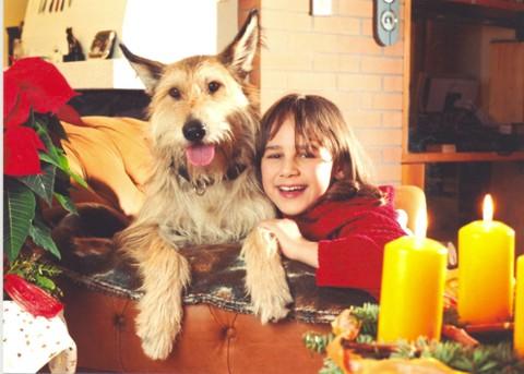Das Theobromin, das in der Schokolade vorkommt, wirkt wie Gift auf den Hundekörper.