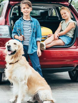 happy little kids with dog in car trunk